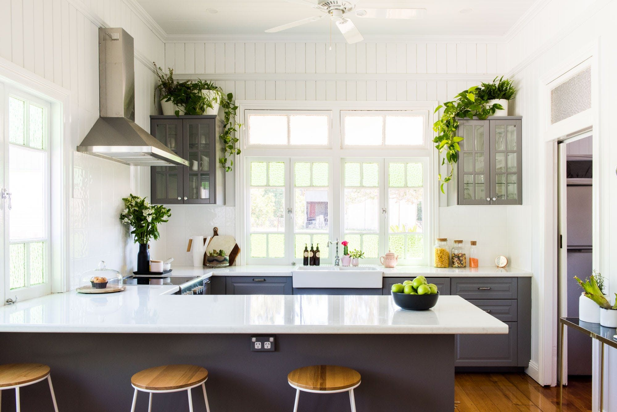 plants above kitchen cabinets